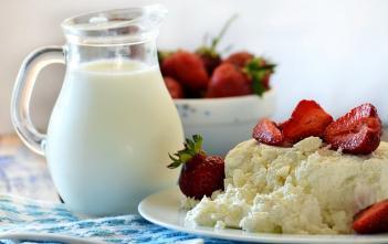 calcium rich diet