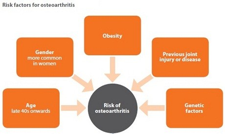 osteoarthritis risk factors